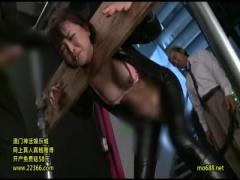 夫の仇の組織に捕らえられギロチン拘束で性的拷問を受ける美人女捜査官