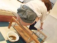 強制排便3 〜浣腸挿入〜 女子校生編