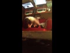 リアル盗撮 ネットカフェでセックスしているところをスマホ撮りされたカッ...