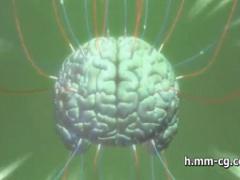 脳内から肉便器性奴隷へと変えていく電気凌辱! 完全洗脳された女はただ男...