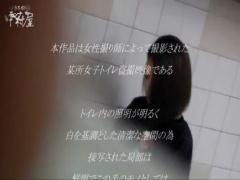 トイレ盗撮 モンナさんの女子トイレ盗み撮り 美しい日本の未来 No.44