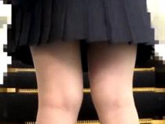 ポニーテールのバイオリンとかやってそうなお嬢様女子校生が電車で痴漢に...