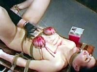欧州カルト拷問 激針5