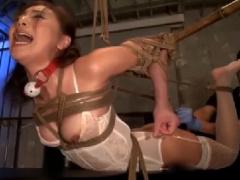 2匹の性奴隷 縛られ抵抗のできない牝犬の膣と口をディルドとチンポで弄ぶ!