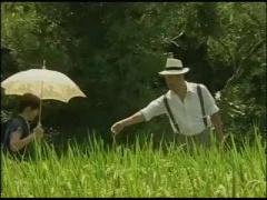 ヘンリー塚本 真夏に別荘で不倫する熟女カップル